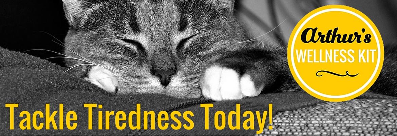 Tackle Tiredness Today banner V2